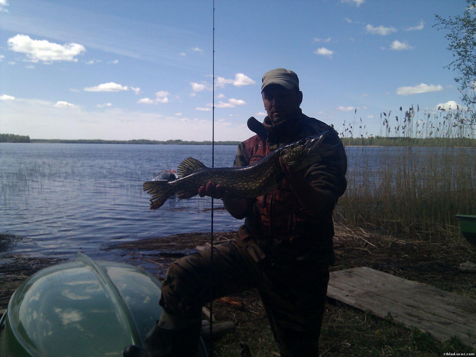 латвийский рыболовный сайт